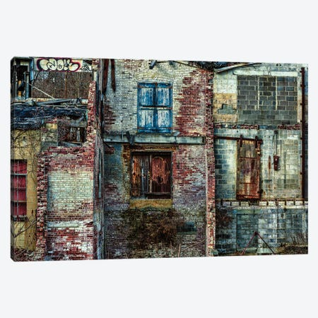 Ruined Beauty Canvas Print #DVG161} by David Gardiner Canvas Art Print