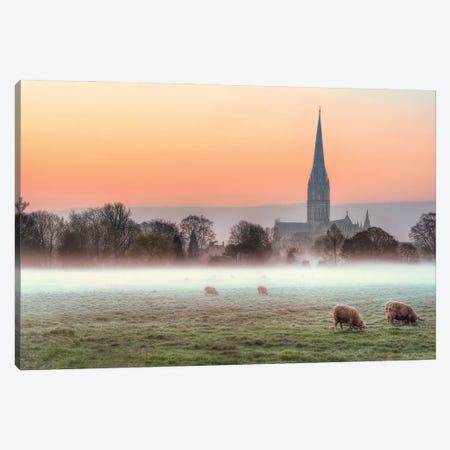 Salisbury Morn Canvas Print #DVG162} by David Gardiner Art Print