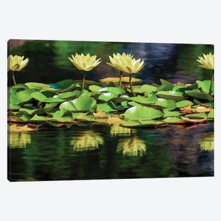 Lilly Pond Canvas Print #DVG196} by David Gardiner Canvas Art Print