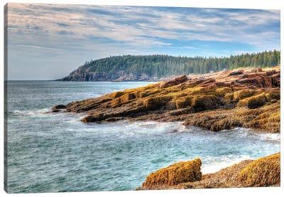 Acadia Coast Canvas Art Print
