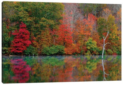 Autumn Scene Canvas Art Print