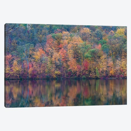 Fall Lake Canvas Print #DVG228} by David Gardiner Canvas Wall Art