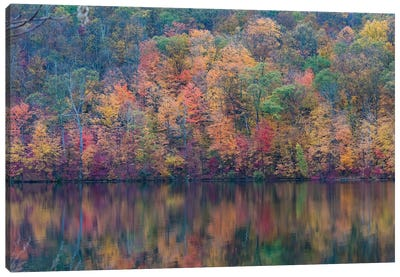 Fall Lake Canvas Art Print