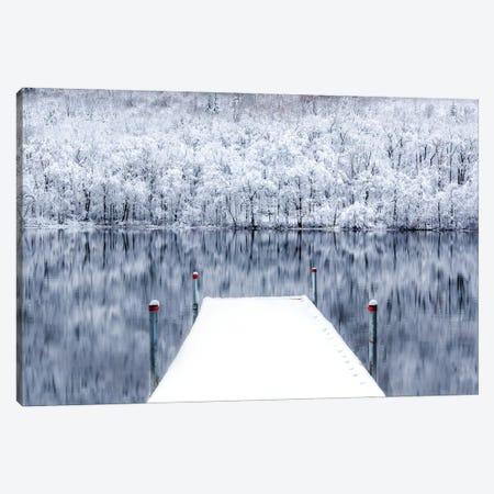 Freeze Frame Canvas Print #DVG233} by David Gardiner Canvas Art Print