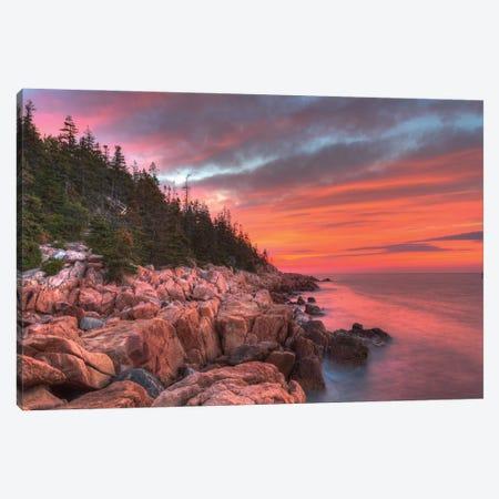Maine Morning Canvas Print #DVG247} by David Gardiner Canvas Print
