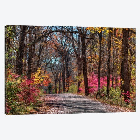Manor Trail Canvas Print #DVG249} by David Gardiner Canvas Art