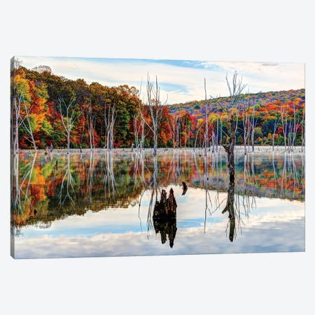 Monksville Fall Canvas Print #DVG253} by David Gardiner Art Print