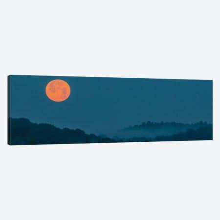 Moonrise Mist Canvas Print #DVG254} by David Gardiner Canvas Wall Art