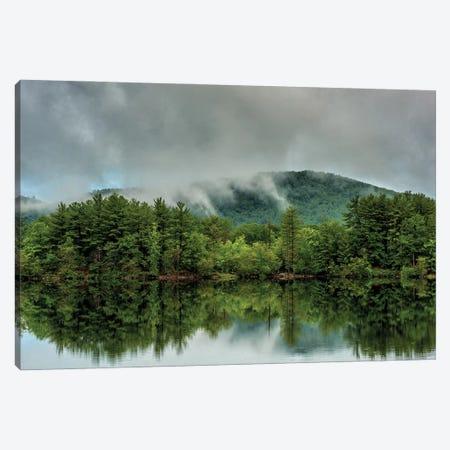 Reflected Green Canvas Print #DVG262} by David Gardiner Canvas Art