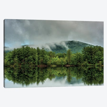 Reflected Green 3-Piece Canvas #DVG262} by David Gardiner Canvas Art
