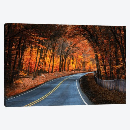 Skylands Fall Canvas Print #DVG271} by David Gardiner Canvas Print