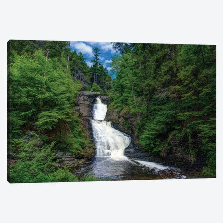 Summer Falls Canvas Print #DVG276} by David Gardiner Canvas Artwork