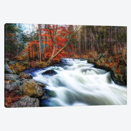 Wanaque Flow Canvas Print #DVG285} by David Gardiner Canvas Art Print