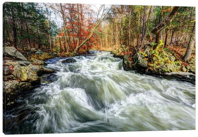 Whitewater Canvas Art Print