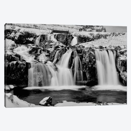 Winter Falls II Canvas Print #DVG289} by David Gardiner Canvas Artwork