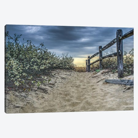 Beach Path Canvas Print #DVG328} by David Gardiner Canvas Art Print