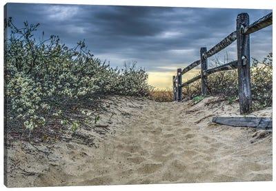 Beach Path Canvas Art Print