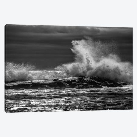 Crash Canvas Print #DVG350} by David Gardiner Canvas Artwork