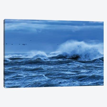 Heavy Seas Canvas Print #DVG367} by David Gardiner Canvas Wall Art