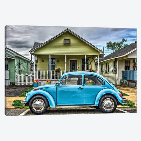 Bug Out Front Canvas Print #DVG399} by David Gardiner Canvas Art