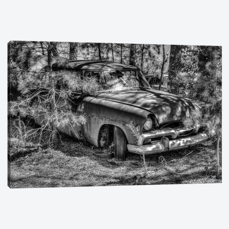 In the Rough Canvas Print #DVG403} by David Gardiner Canvas Wall Art