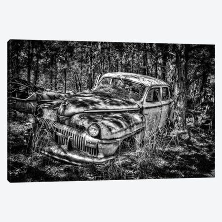 Seen Better Days Canvas Print #DVG410} by David Gardiner Canvas Print