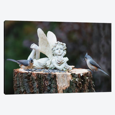 Titmouse Lunch Canvas Print #DVG81} by David Gardiner Canvas Art Print