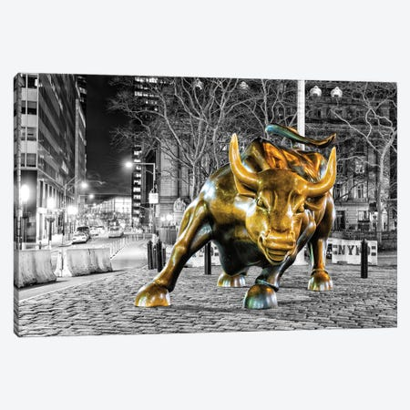 Angry Bull Canvas Print #DVG89} by David Gardiner Canvas Print
