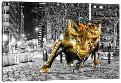 Angry Bull Canvas Art Print