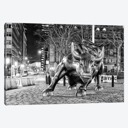 Angry Bull II Canvas Print #DVG90} by David Gardiner Canvas Art