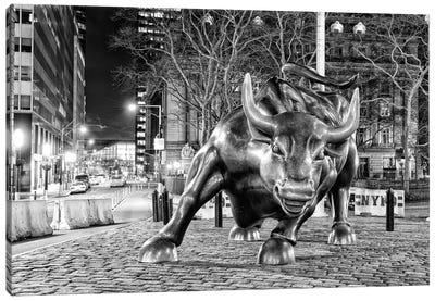 Angry Bull II Canvas Art Print