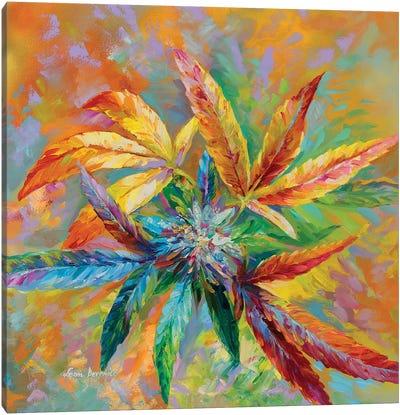 Marijuana Art  Canvas Art Print
