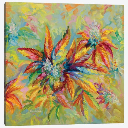 Marijuana Buds & Leaves Canvas Print #DVI128} by Leon Devenice Canvas Art