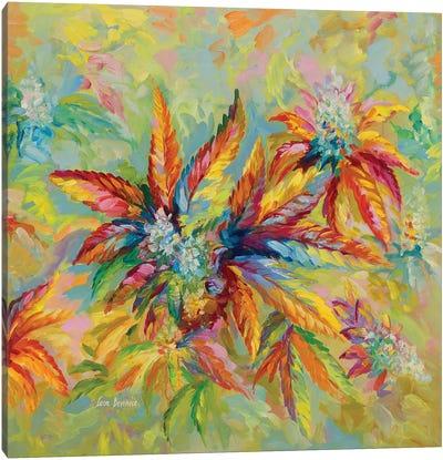Marijuana Buds & Leaves Canvas Art Print