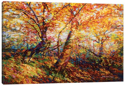 Autumn Memories Canvas Art Print