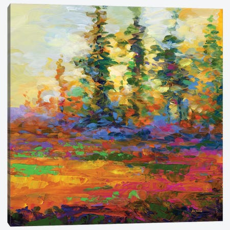Afternoon Impressions Canvas Print #DVI208} by Leon Devenice Art Print