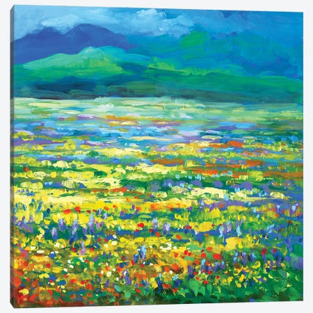 Meadow Of Wildflowers Canvas Print #DVI209} by Leon Devenice Canvas Art Print