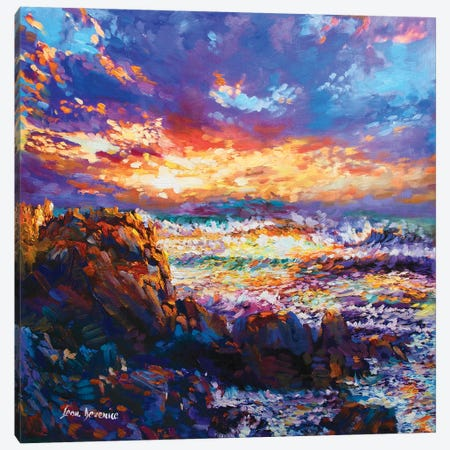 Dynamic Sea Canvas Print #DVI21} by Leon Devenice Canvas Print