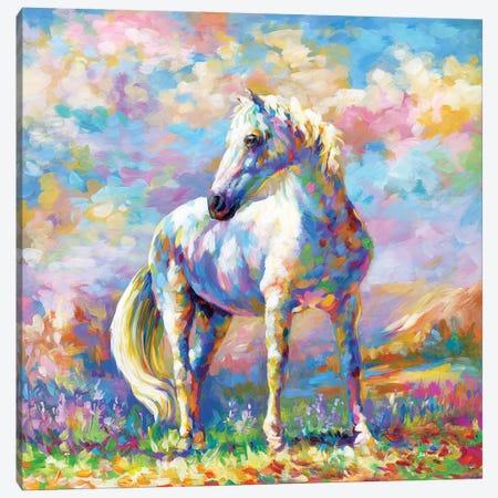 Horse In A Meadow Canvas Print #DVI224} by Leon Devenice Canvas Artwork