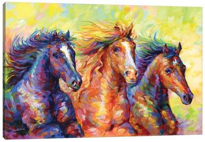 Three Friends Canvas Art Print