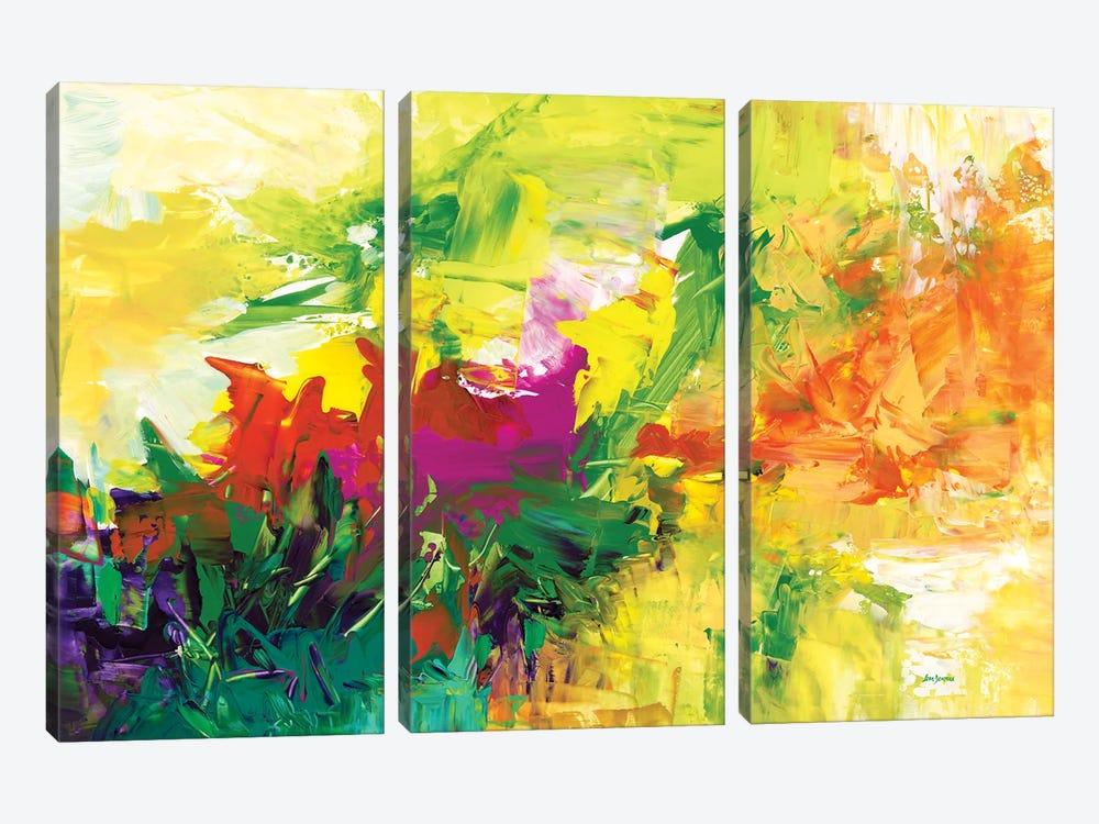 Abundance by Leon Devenice 3-piece Canvas Wall Art