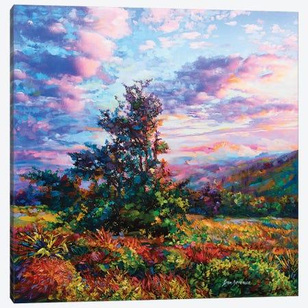 Explore , Dream , Discover Canvas Print #DVI26} by Leon Devenice Canvas Art