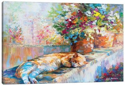 Felix The Boss Canvas Art Print