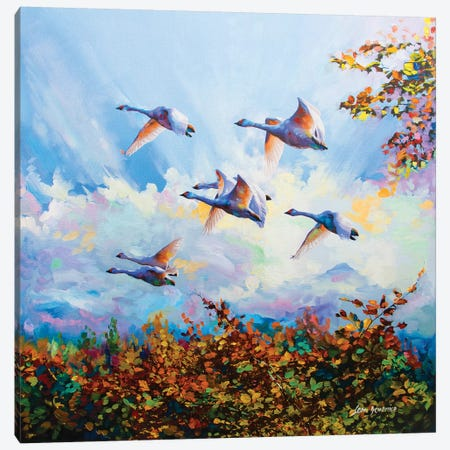 Flying Swans Canvas Print #DVI31} by Leon Devenice Canvas Wall Art