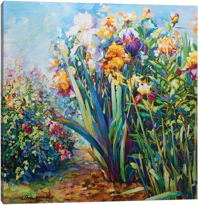 Morning Medidation Canvas Art Print