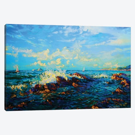 Sea Of Tranquility Canvas Print #DVI69} by Leon Devenice Art Print