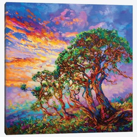 The Present Moment Canvas Print #DVI93} by Leon Devenice Canvas Artwork