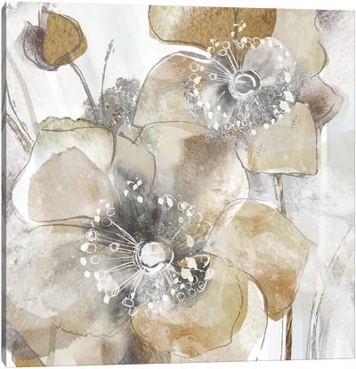 Taupe Spring Poppy II Canvas Art Print