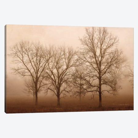Morning Calm III Canvas Print #DVS18} by Debra Van Swearingen Canvas Artwork