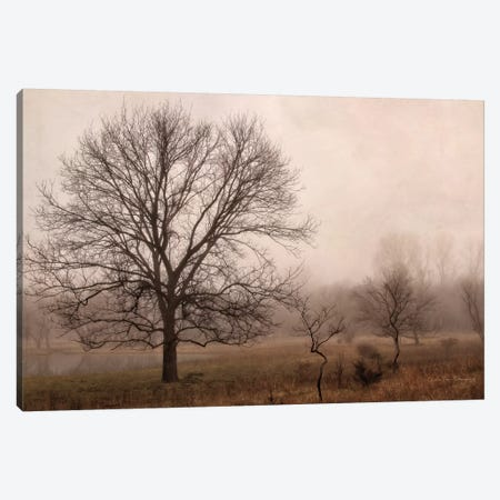 Morning Calm IV Canvas Print #DVS19} by Debra Van Swearingen Canvas Art